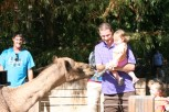 A parent helps a kid feed giraff at the Lincoln Children's Zoo, Nebraska.